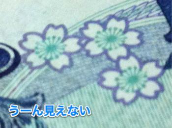 20120320_macro_005