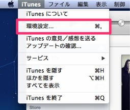 20121229_osoji006