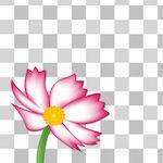 『背景透過』写真の背景を切り抜いて透過画像を簡単に作成できるアプリ!